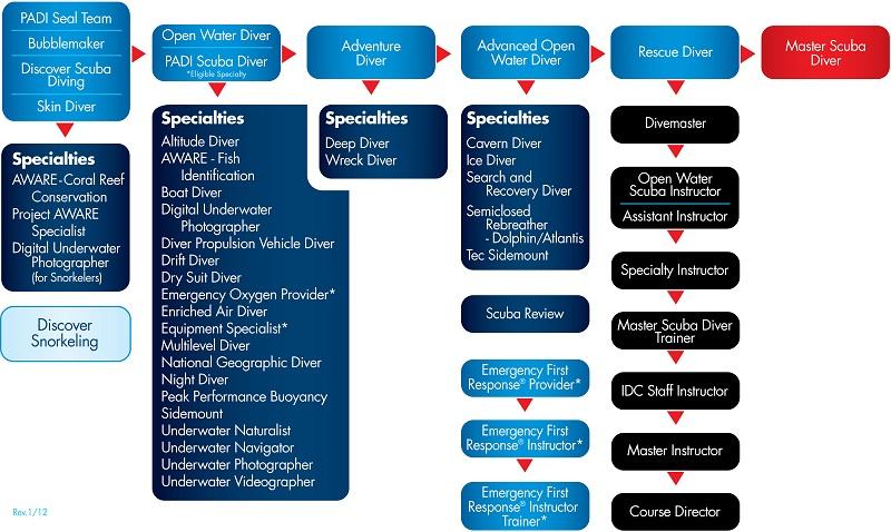 PADI Continuing Education Chart